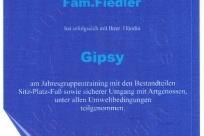 Zert-Gipsy